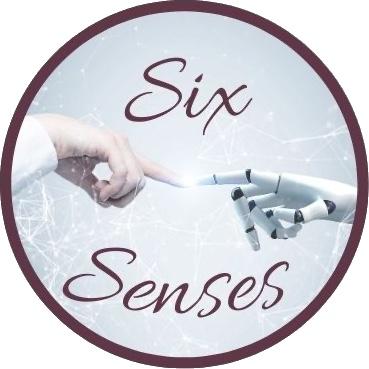 SixSenses Nürnberg Logo